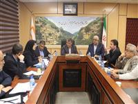 بازدید  عضو هیات مدیره از پروژه های مسکن مهر استان گیلان(گزارش تصویری)